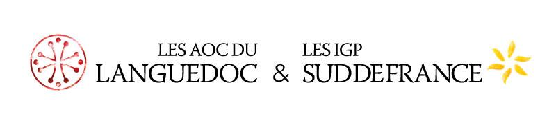 logo-civl-2020.jpg